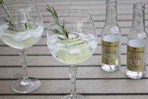 Gin Tonic Rozemarijn Komkommer
