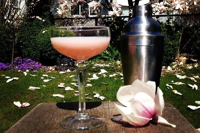 Magnolia cocktail