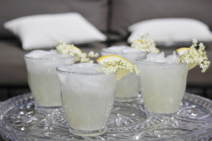 Elderflower Gin Sour