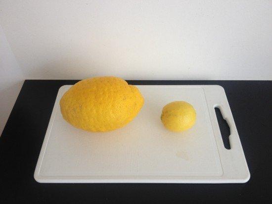 Citroen vs citroen