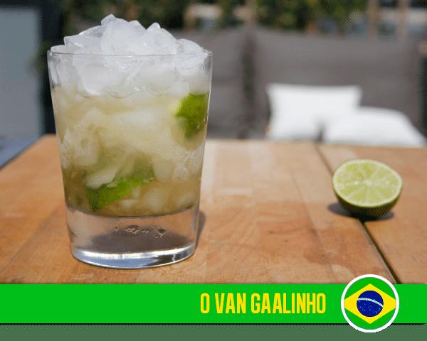 O Van Gaalinho