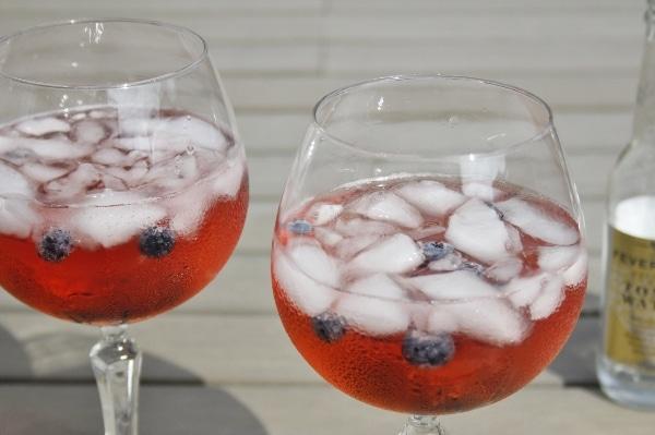 Gin Tonic Bosbessen