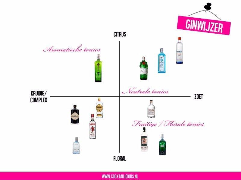 Ginwijzer