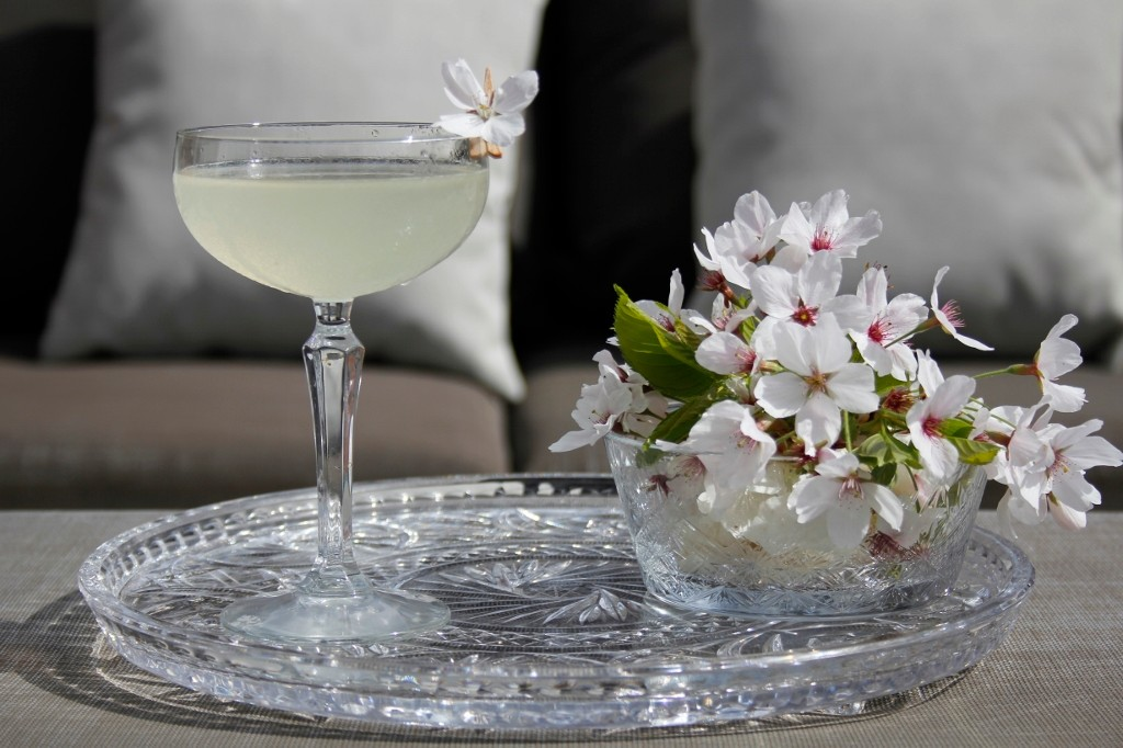 Elderflower Martini foto