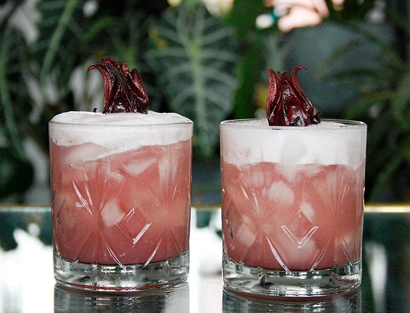 Hibiscus-Sour cocktail
